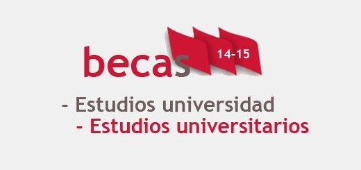 becas14-15_Universidad