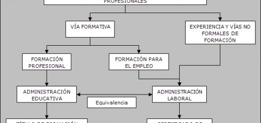 grafico-cualificaciones