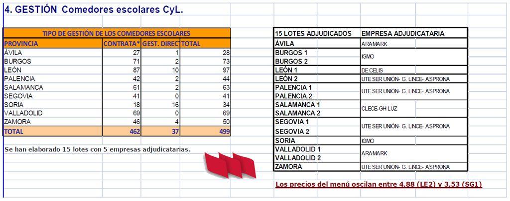 Informe comedores escolares Centros Docentes Públicos - Stecyl-i