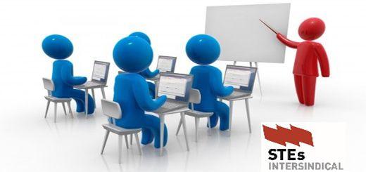 cursos-de-formacion-STEs