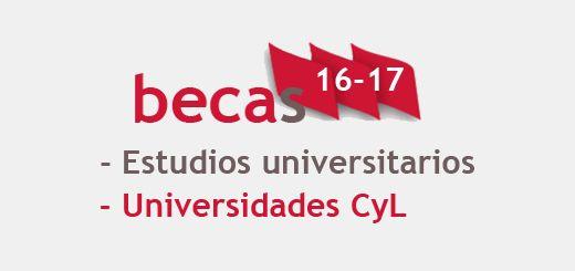 becas16-17-Universidad