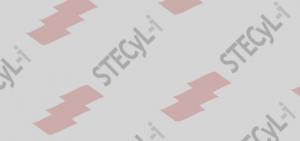 STECyL-i