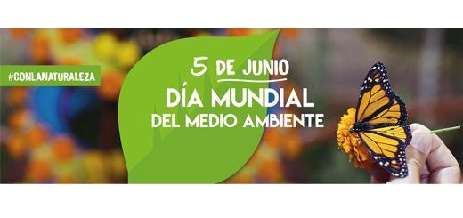 5-junio-Dia-Mundial-Medio-Ambiente