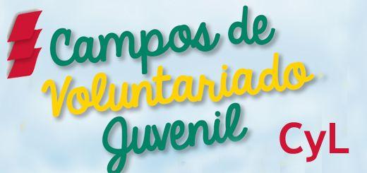 Campos-Voluntariado-Joven-CyL