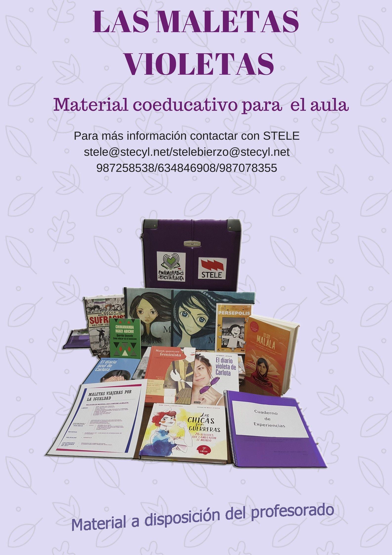 Cartel maletas violetas ESO
