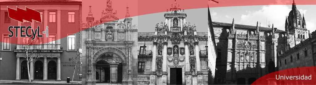 Universidades Públicas Castilla y León