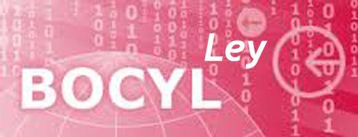 BOCyL_Ley_520