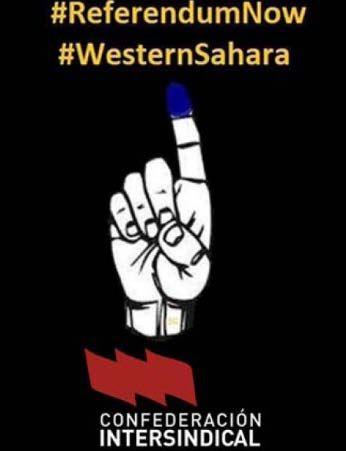 Referendum_Sahara