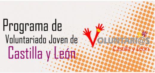 Campos-Voluntariado-Juvenil