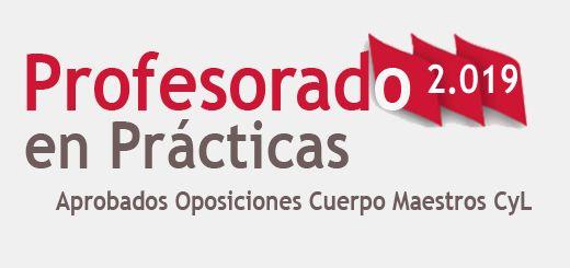 Oposiciones-Practicas-2019