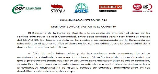 Comunicado-Coronavirus-STECyL-13-03-2020-520x245
