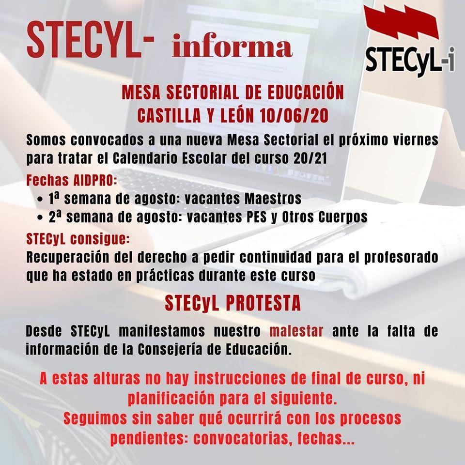 Informe-Mesa-Sectorial-10-06-2020-STECyL