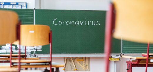 pizarra-coronavirus-520x245