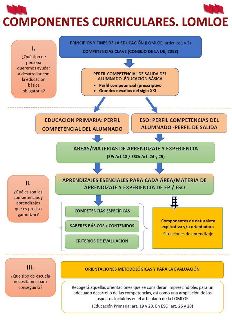 El Ministerio hace pública la propuesta de la estructura y componentes  curriculares para la elaboración de las enseñanzas mínimas de la educación  básica - STECyL-i