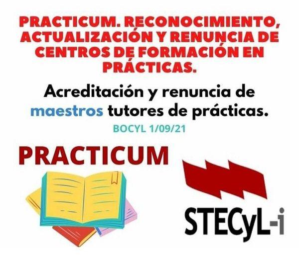 Practicum-2021