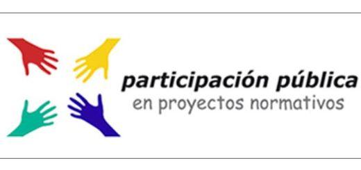 Participacion-Publica